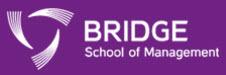 bridgesom-logo